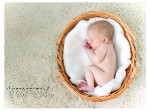 Princeton NJ Newborn Photographer - McCoy Newborn