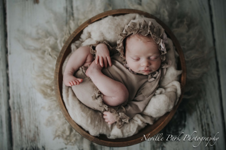 Emma newborn session with too many favourites neville park photography