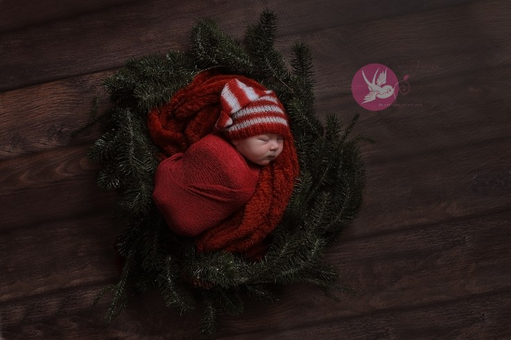 Fresh little bundle of love...   I   Bloomington, IN newborn photographer