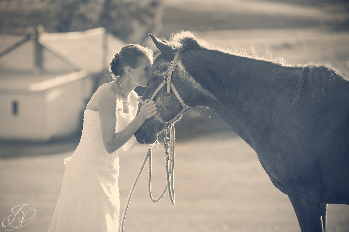 Saratoga Wedding Photographer, upstate wedding photographer, outdoor wedding photo, bride with horse photo
