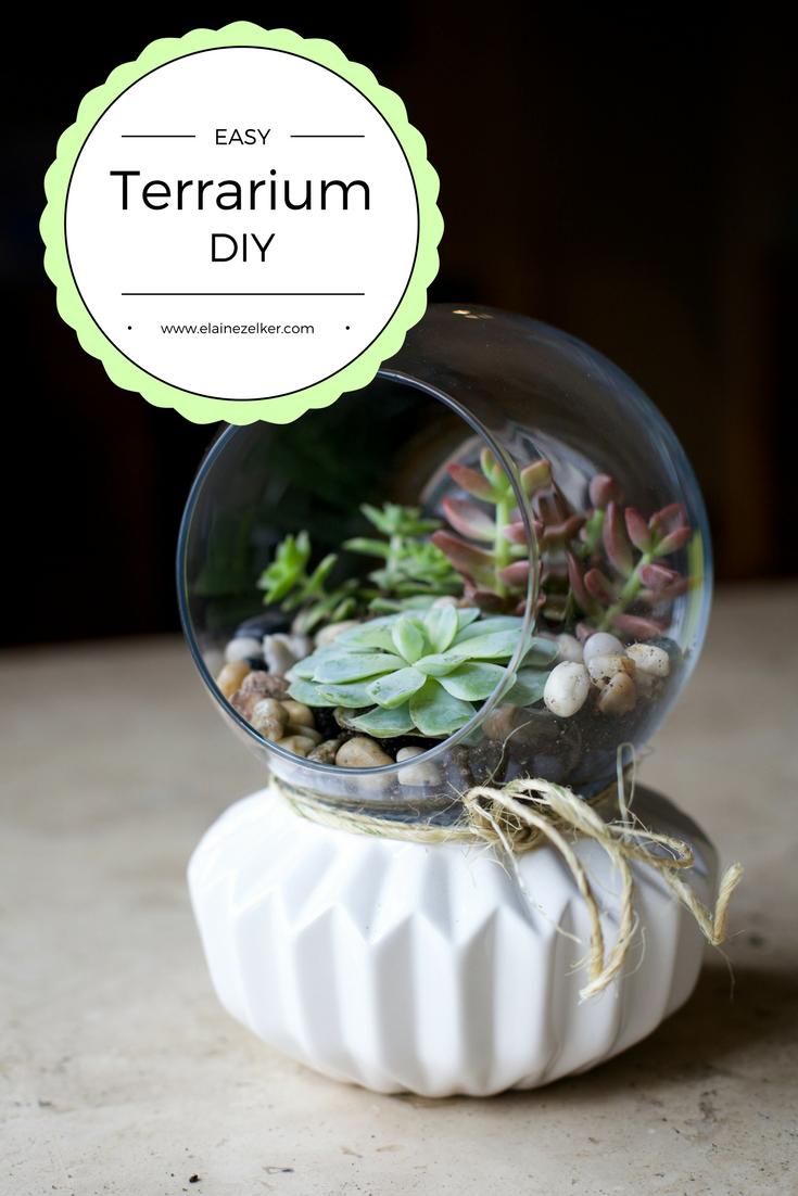 Easy Diy Terrarium Planter Elaine Zelker Photography