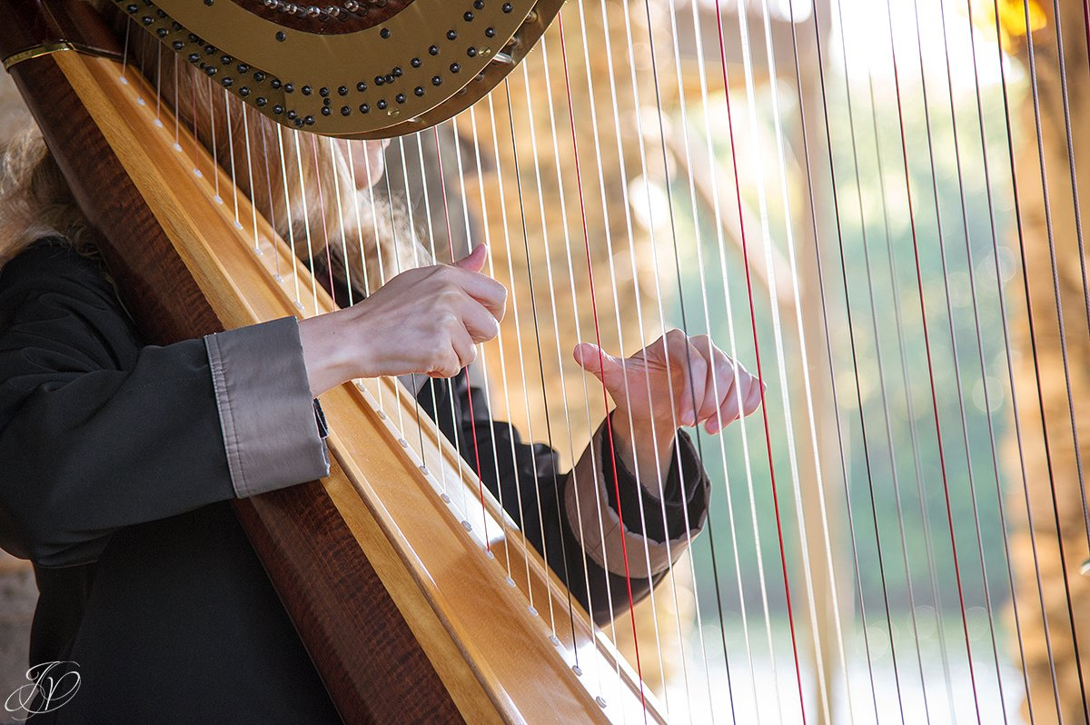 harpist at ceremony