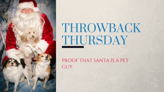 pictures of pets with Santa in Bowling Green Kentucky with Mitchell Photography
