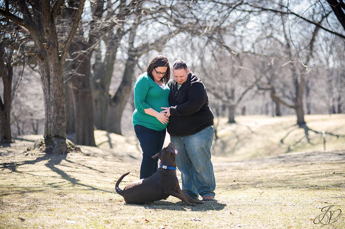 expecting mother and chocolate lab, maternity session washington park, maternity and pet portraits in washington park albany, albany maternity photographer, albany maternity photos